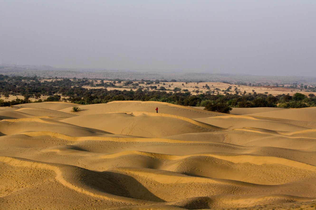 India has a large and unmatched variety of flora and fauna from the grasslandsIceland to desert areas of India Thar desert of India provides home to many wild animals